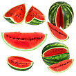 Set Fresh Watermelon And Slices Isolated stock photography