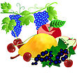 Set Of Fruits. Pear An Apple A Cherry A Currant Grapes stock illustration