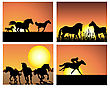 Set Of Horse Silhouette On Sunset Background.