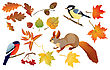 Bay Set Of Isolated Autumn Forest Leafs And Little Birds And Animals (squirrel, Bullfinch And Tomtit stock vector
