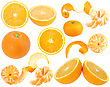 Set Of Orange And Tangerine Fresh Fruits For Your Design Close-up Studio Photography stock photo