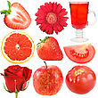Set Of Red Fruits Vegetables And Flowers Close-up Studio Photography stock photo