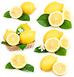 Set Of Ripe Lemon Fruits stock photo