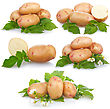 Top Set Of Ripe Potatoes Vegetable With Green Leafs stock photo
