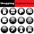 Set Of Shopping Glossy Icons. EPS 10 Vector Illustration