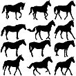 Set Silhouette Of Horse. Vector Illustration