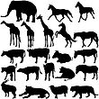 Set Silhouettes Animals In Zoo Collection On A White Background. Vector Illustration