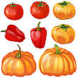Set Of Thankgivings Day Vegetable Icons. Vector Illustration 10 EPS With Transparency