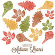Set Of Watercolor Colorful Autumn Leaves. Vector Illustration stock vector