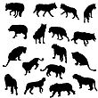 Set Of Wolves, Tigers, Leopareds And Lions Silhouettes. Vector Illustration.