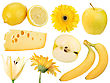 Set Of Yellow Fruits Food And Flowers Close-up Studio Photography