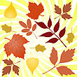 Several Autumn Yellowing Of Leaves From Different Trees stock illustration
