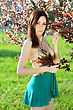 Sexy Slim Brunette Wearing Frank Dress Poising In Blooming Trees stock photo