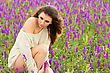 Sexy Young Lady Posing In A Flowering Field stock photo