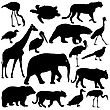 Silhouette Elephant Tiger Bear Giraffe Flamingo Pelican Goose On A White Background