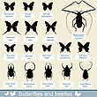 Silhouettes Of Insects - Beetles And Butterflies