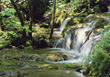 Small Waterfall in Lush Forest stock image