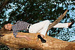 Smiling Blonde Lying On A Tree Branch