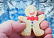 Smiling Gingerbread Man In The Hand Against Frost stock photography