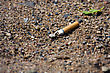 Smoked Cigarette Smashed And Littered On The Ground stock photography