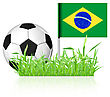 Soccer Ball With Brasil Flag On White Background
