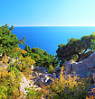 South Part Of Crimea Peninsula, Beach Landscape. Pine