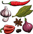 Spice. Onion, Garlic, Pepper, Bay Leaf, Hot Pepper Drawing Woodcut Method stock image