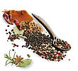 Spices And Herbs On White Background stock photo