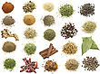 Spices Collection On White Background