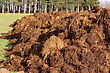 Plowing Spreading A Bunch Of Farm Manure For Organic Agriculture stock image