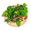 Sprigs Of Mint, Lemon Balm, Oregano, Tutsan, Sage Leaves On A Round Wooden Board