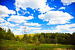 Spring Forest And Blue Sky With White Clouds stock photo