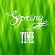 Spring Lettering Design. Green Banner With A Textured Abstract Background And Text
