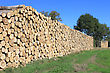 Steres For Logs Cut In Fuel Wood For Renewable stock photo