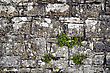 Irish Stone Wall Fragment. King Castle To Trim, Co. Meath, Ireland. stock photo