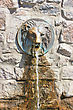Street Faucet With A Lion Head With A Stream Of Fresh Water Coming Out Of It's Mouth. Lion Water Fountain Sculpture In Khakiv. Ukraine stock photo