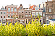 Streets And Canals Of Haarlem, Netherlands stock photo