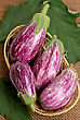 Striped Eggplants In A Basket stock photography