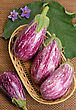 Striped Eggplants In A Basket stock image