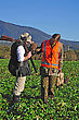Successful Pheasant Hunters Roam Through A Winter Feed Crop On The West Coast, South Island, New Zealand stock photo
