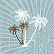 Summer Background With Grunge Palms