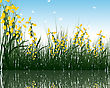 Summer Grass With Reflections In Water. EPS 10 Vector Illustration
