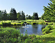 Golf Summer Landscape With Pond And Golf Course stock photo