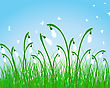 Summer Meadow Background. EPS 10 Vector Illustration Without Transparency