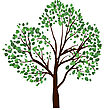 Summer Tree With Green Leaves. EPS 10 Vector Illustration stock illustration