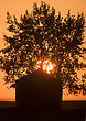 Sunset Saskatchewan Canada Granary Agriculture Sun Tree stock photography