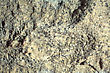 Surface Of The Multi-colored Limestone. Texture Close-up stock photography
