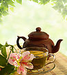 Aromatic Tea Ceremony. Green Tea, Flower And Teapot stock photo