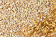 Texture Of Oatmeal With Stalks Of Oats In The Bottom Right Corner stock photo