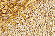 Texture Of Oatmeal With Stalks Of Oats In The Upper Left Corner stock image